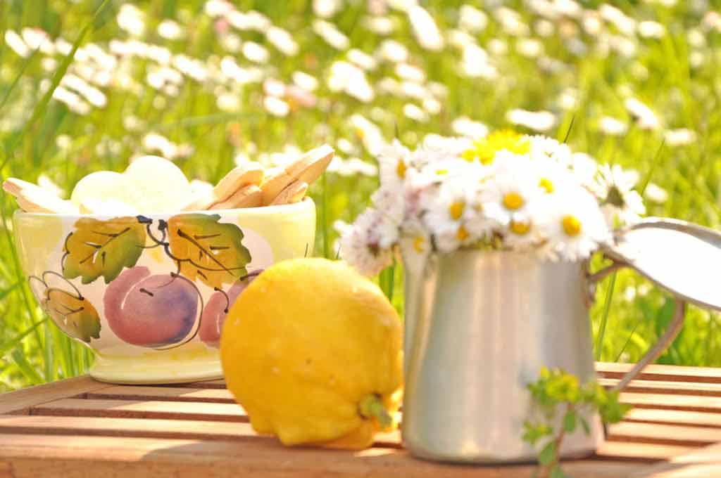 immagine dei biscotti al limone